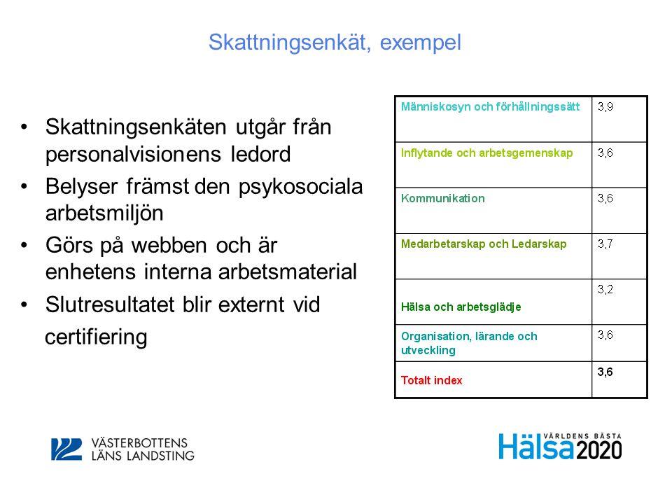 Skattningsenkät, exempel •Skattningsenkäten utgår från personalvisionens ledord •Belyser främst den psykosociala arbetsmiljön •Görs på webben och är e