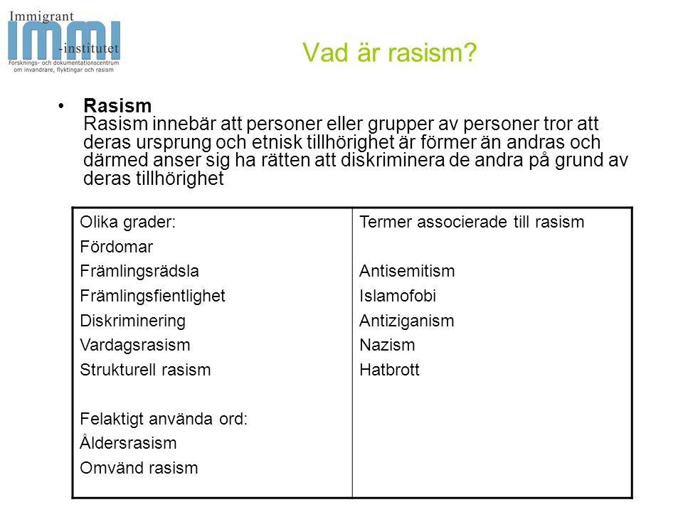 Vad är rasism.