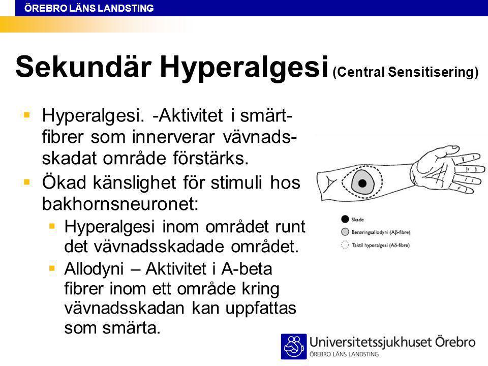 ÖREBRO LÄNS LANDSTING Sekundär Hyperalgesi (Central Sensitisering)  Hyperalgesi.