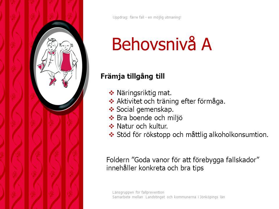 Uppdrag: färre fall - en möjlig utmaning! Länsgruppen för fallprevention Samarbete mellan Landstinget och kommunerna i Jönköpings län Främja tillgång