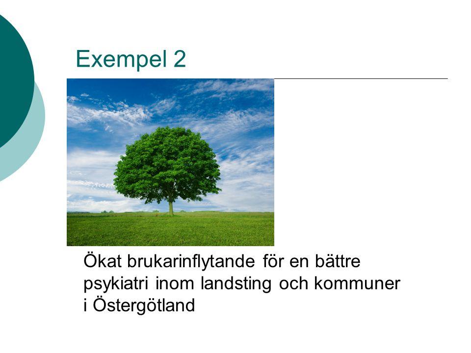 Exempel 2 Ökat brukarinflytande för en bättre psykiatri inom landsting och kommuner i Östergötland