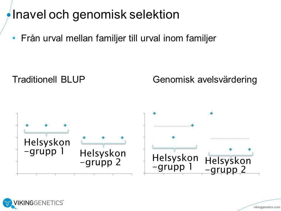 •Från urval mellan familjer till urval inom familjer Traditionell BLUP Genomisk avelsvärdering Inavel och genomisk selektion Helsyskon -grupp 1 Helsyskon -grupp 2 Helsyskon -grupp 1 Helsyskon -grupp 2