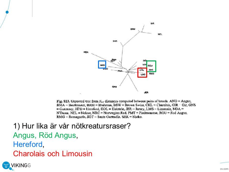 1) Hur lika är vår nötkreatursraser? Angus, Röd Angus, Hereford, Charolais och Limousin
