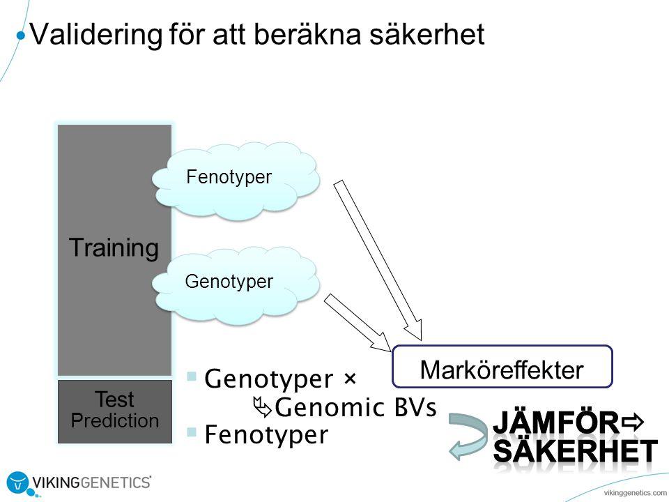 Validering för att beräkna säkerhet Training Test Prediction  Genotyper ×  Genomic BVs  Fenotyper Marköreffekter Genotyper Fenotyper