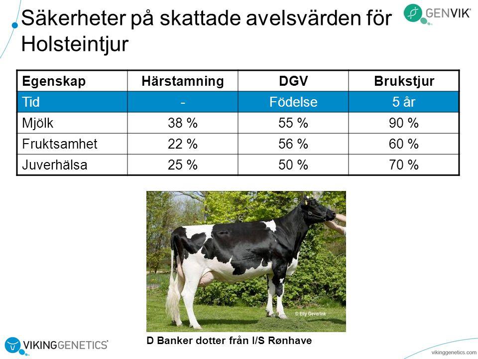 Säkerheter på skattade avelsvärden för Holsteintjur EgenskapHärstamningDGVBrukstjur Tid-Födelse5 år Mjölk38 %55 %90 % Fruktsamhet22 %56 %60 % Juverhälsa25 %50 %70 % D Banker dotter från I/S Rønhave