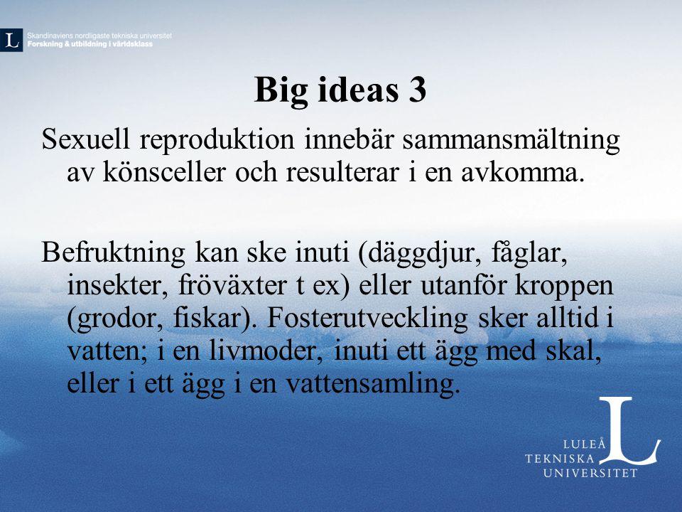 Big ideas 3 Sexuell reproduktion innebär sammansmältning av könsceller och resulterar i en avkomma. Befruktning kan ske inuti (däggdjur, fåglar, insek