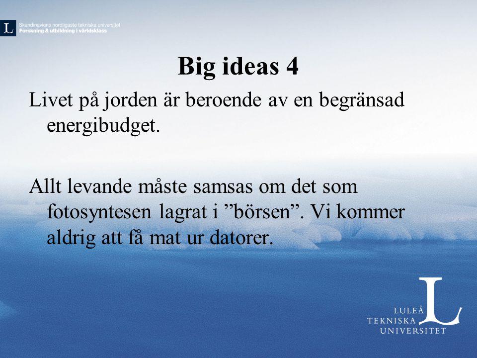 """Big ideas 4 Livet på jorden är beroende av en begränsad energibudget. Allt levande måste samsas om det som fotosyntesen lagrat i """"börsen"""". Vi kommer a"""