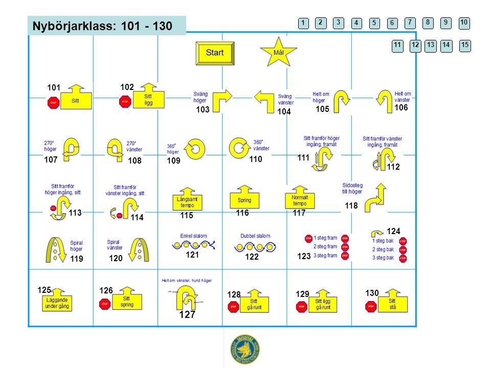 Nybörjarklass: 101 - 130 1 2 3 4 5 6 7 8 9 10 11 12 1314 15 101 102 103 104 105 106 107 108 110 109 111 112 113 115 114 117 116 118 119 120 121 122 12