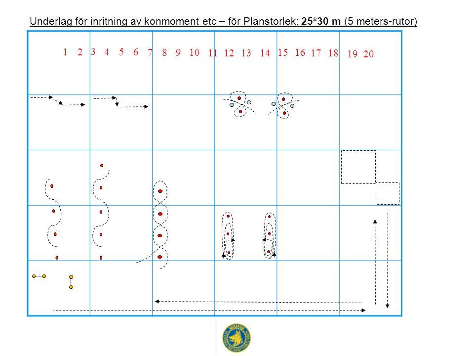 2019 1817 1615 14131211 10 9 8 7 654 3 21 Underlag för inritning av konmoment etc – för Planstorlek: 25*30 m (5 meters-rutor)