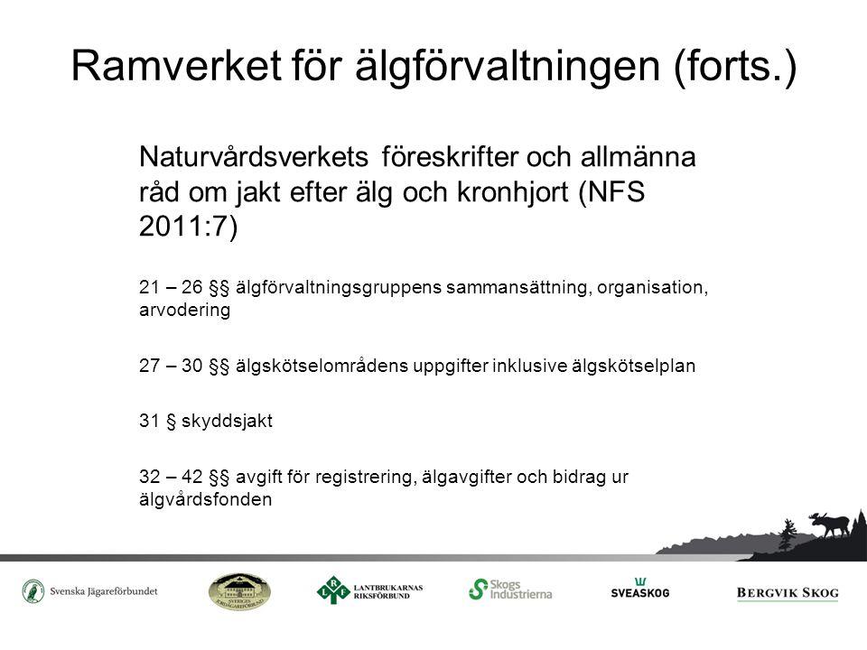 Ramverket för älgförvaltningen (forts.) Naturvårdsverkets föreskrifter och allmänna råd om jakt efter älg och kronhjort (NFS 2011:7) 21 – 26 §§ älgför