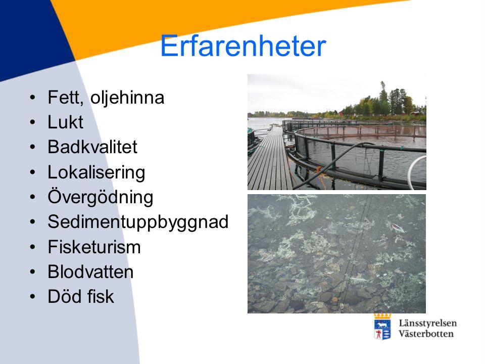 Erfarenheter •Fett, oljehinna •Lukt •Badkvalitet •Lokalisering •Övergödning •Sedimentuppbyggnad •Fisketurism •Blodvatten •Död fisk