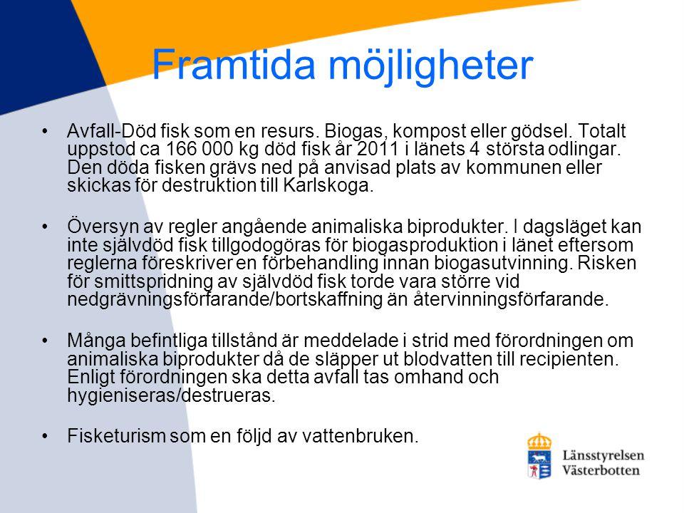 Framtida möjligheter •Avfall-Död fisk som en resurs. Biogas, kompost eller gödsel. Totalt uppstod ca 166 000 kg död fisk år 2011 i länets 4 största od