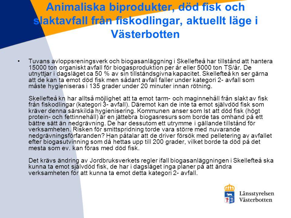Animaliska biprodukter, död fisk och slaktavfall från fiskodlingar, aktuellt läge i Västerbotten •Tuvans avloppsreningsverk och biogasanläggning i Ske