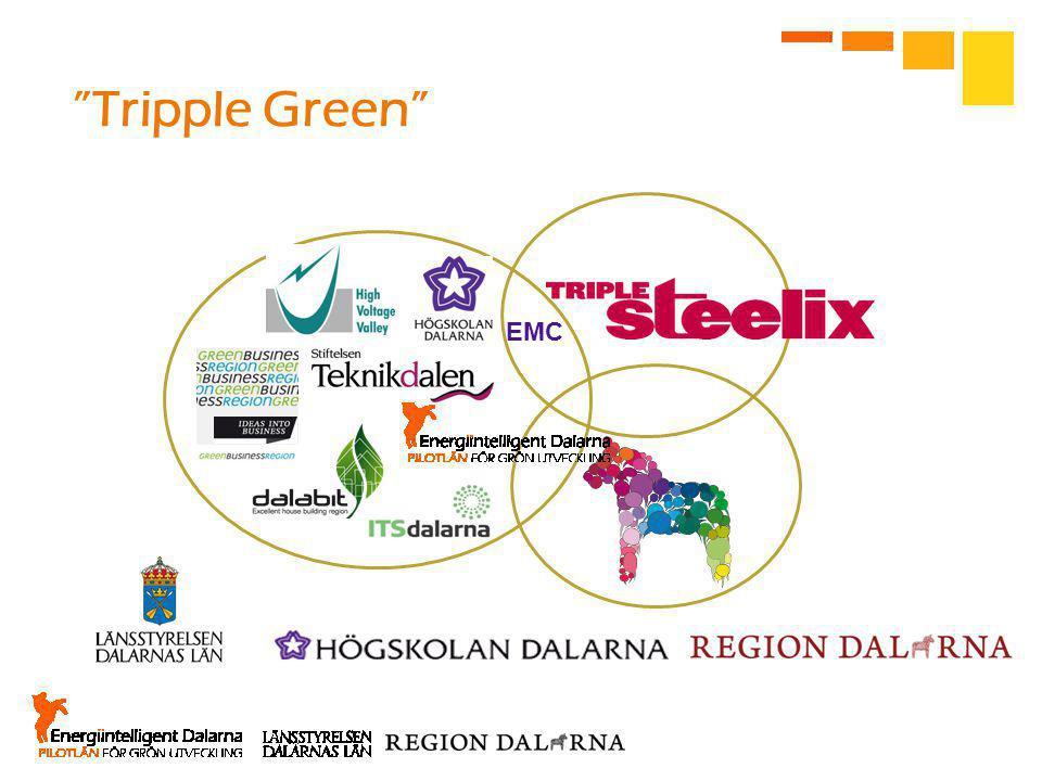 EMC Tripple Green