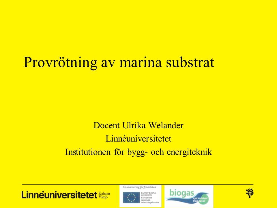 Provrötning av marina substrat • Kalmar biogas AB´s försöksreaktorer ca 30 l/st • Blandning av lantbruksbaserade substrat • Tillsats av vass i en reaktor den andra fungerade som referens