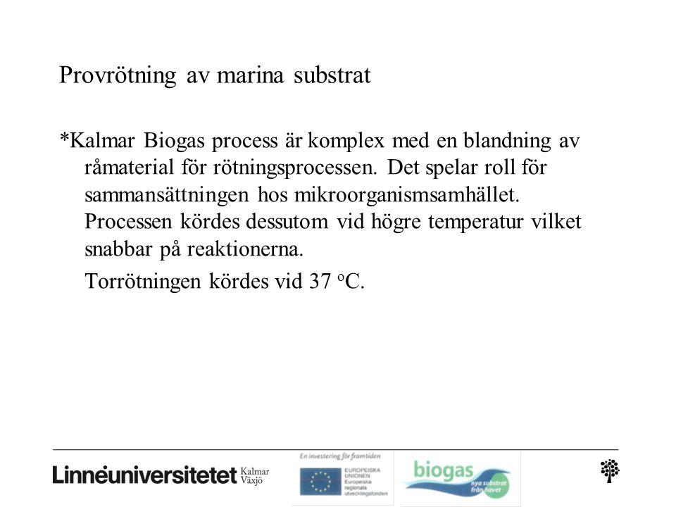 Provrötning av marina substrat *Kalmar Biogas process är komplex med en blandning av råmaterial för rötningsprocessen. Det spelar roll för sammansättn