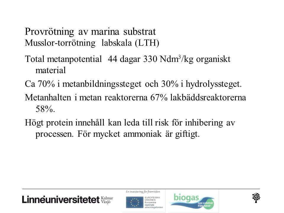 Provrötning av marina substrat Musslor-torrötning labskala (LTH) Total metanpotential 44 dagar 330 Ndm 3 /kg organiskt material Ca 70% i metanbildningssteget och 30% i hydrolyssteget.