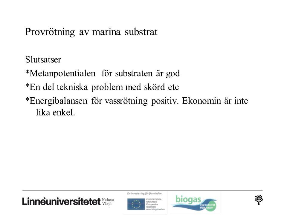 Provrötning av marina substrat Slutsatser *Metanpotentialen för substraten är god *En del tekniska problem med skörd etc *Energibalansen för vassrötning positiv.