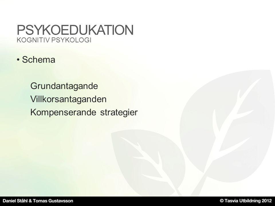 PSYKOEDUKATION •Schema Grundantagande Villkorsantaganden Kompenserande strategier KOGNITIV PSYKOLOGI