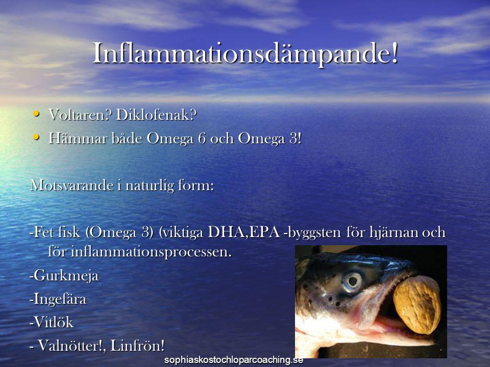 Inflammationsdämpande! • Voltaren? Diklofenak? • Hämmar både Omega 6 och Omega 3! Motsvarande i naturlig form: -Fet fisk (Omega 3) (viktiga DHA,EPA -b