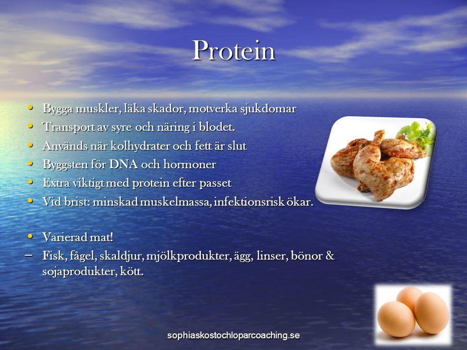Protein • Bygga muskler, läka skador, motverka sjukdomar • Transport av syre och näring i blodet. • Används när kolhydrater och fett är slut • Byggste