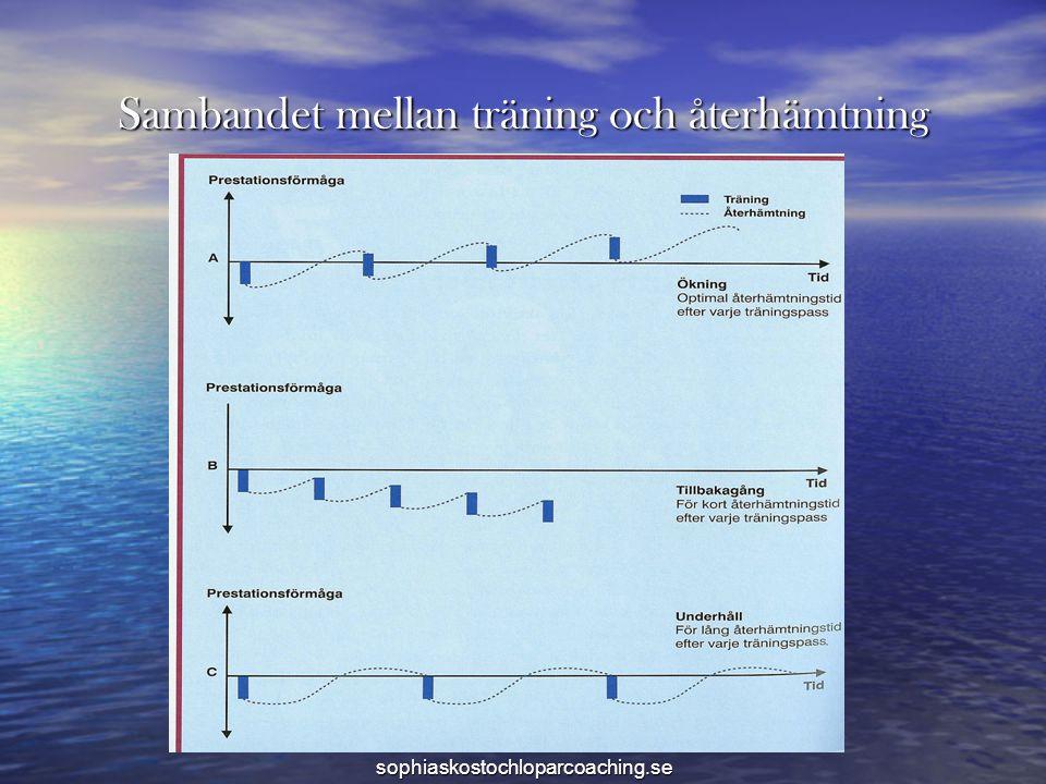 Sambandet mellan träning och återhämtning sophiaskostochloparcoaching.se