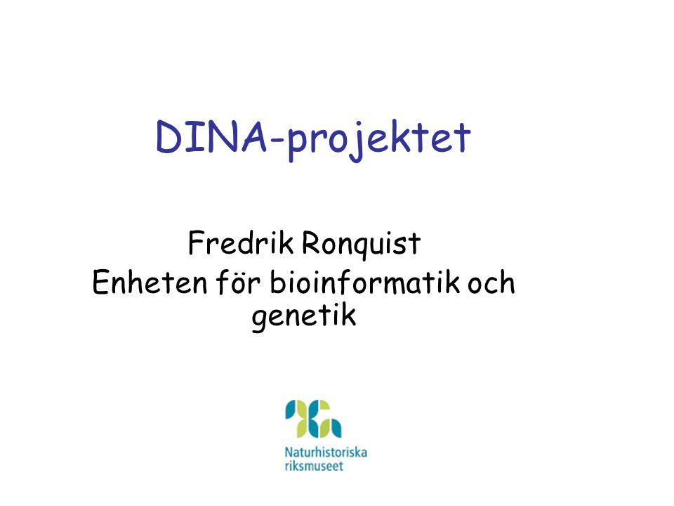 DINA-projektet Fredrik Ronquist Enheten för bioinformatik och genetik