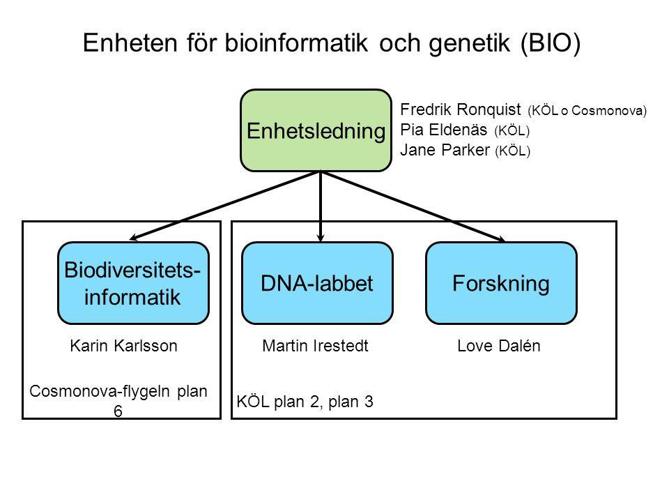 Enheten för bioinformatik och genetik (BIO) Enhetsledning DNA-labbet Biodiversitets- informatik Forskning Fredrik Ronquist (KÖL o Cosmonova) Pia Elden