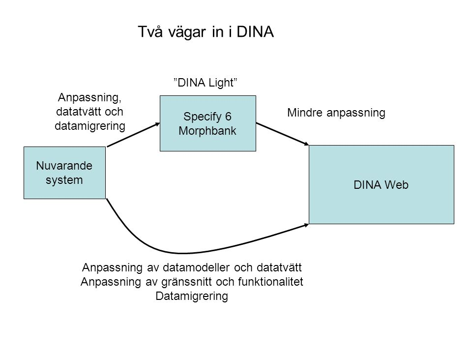 Specify 6 Morphbank Två vägar in i DINA Nuvarande system DINA Web Anpassning av datamodeller och datatvätt Anpassning av gränssnitt och funktionalitet