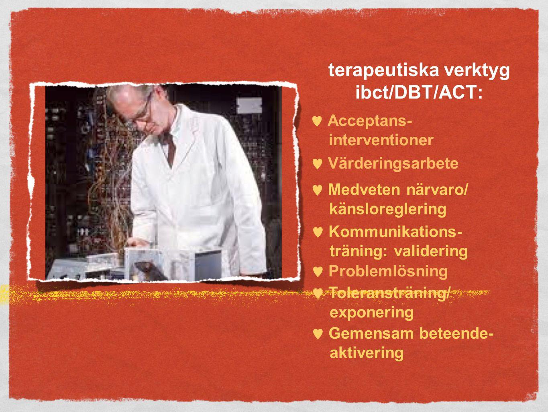 terapeutiska verktyg ibct/DBT/ACT:  Acceptans- interventioner  Värderingsarbete  Medveten närvaro/ känsloreglering  Kommunikations- träning: validering  Problemlösning  Toleransträning/ exponering  Gemensam beteende- aktivering