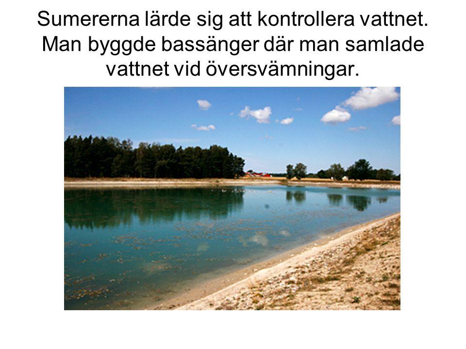 Sumererna lärde sig att kontrollera vattnet. Man byggde bassänger där man samlade vattnet vid översvämningar.