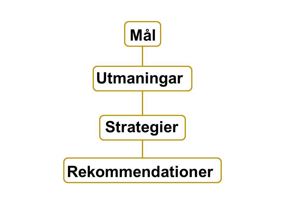 Mål Utmaningar Strategier Rekommendationer