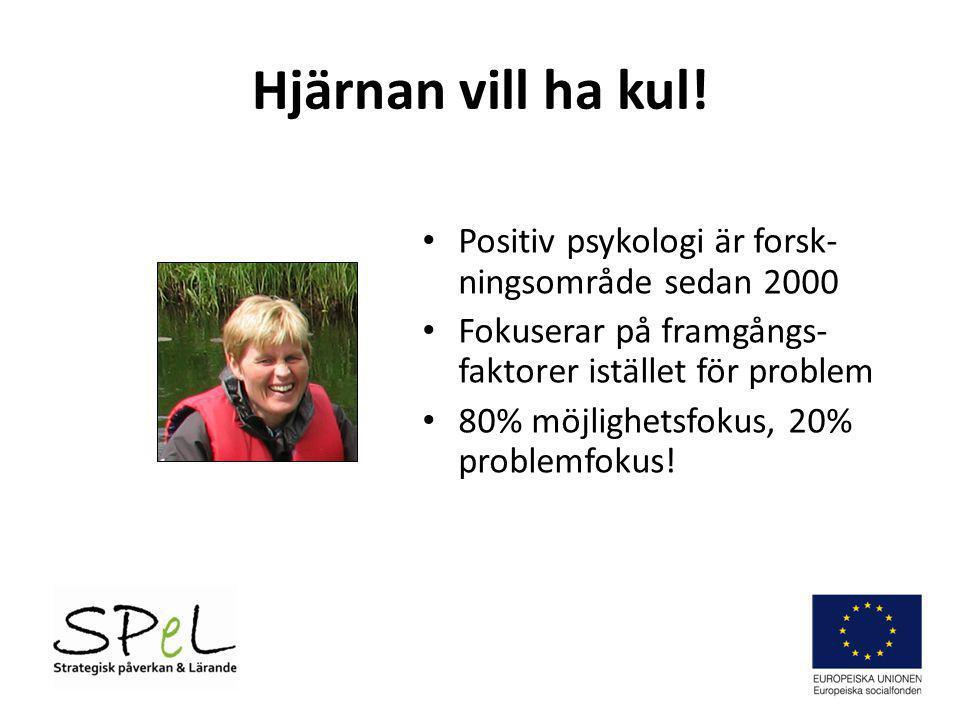 Hjärnan vill ha kul! • Positiv psykologi är forsk- ningsområde sedan 2000 • Fokuserar på framgångs- faktorer istället för problem • 80% möjlighetsfoku