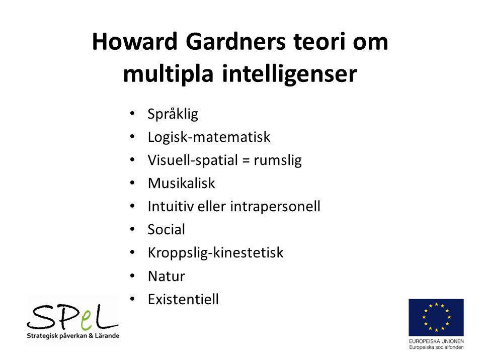 Howard Gardners teori om multipla intelligenser • Språklig • Logisk-matematisk • Visuell-spatial = rumslig • Musikalisk • Intuitiv eller intrapersonell • Social • Kroppslig-kinestetisk • Natur • Existentiell