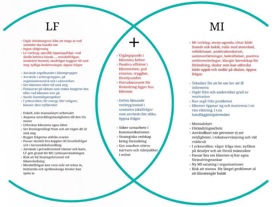 LF inom ledarskap och organisation Undviker det fruktlösa sökandet efter problem och tar den direkta vägen mot lösningen (Källa: Jackson, P.Z.