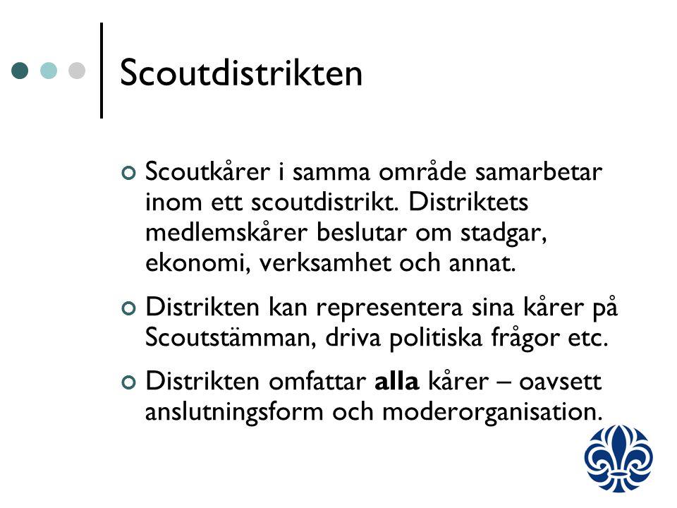 Scoutdistrikten Scoutkårer i samma område samarbetar inom ett scoutdistrikt.