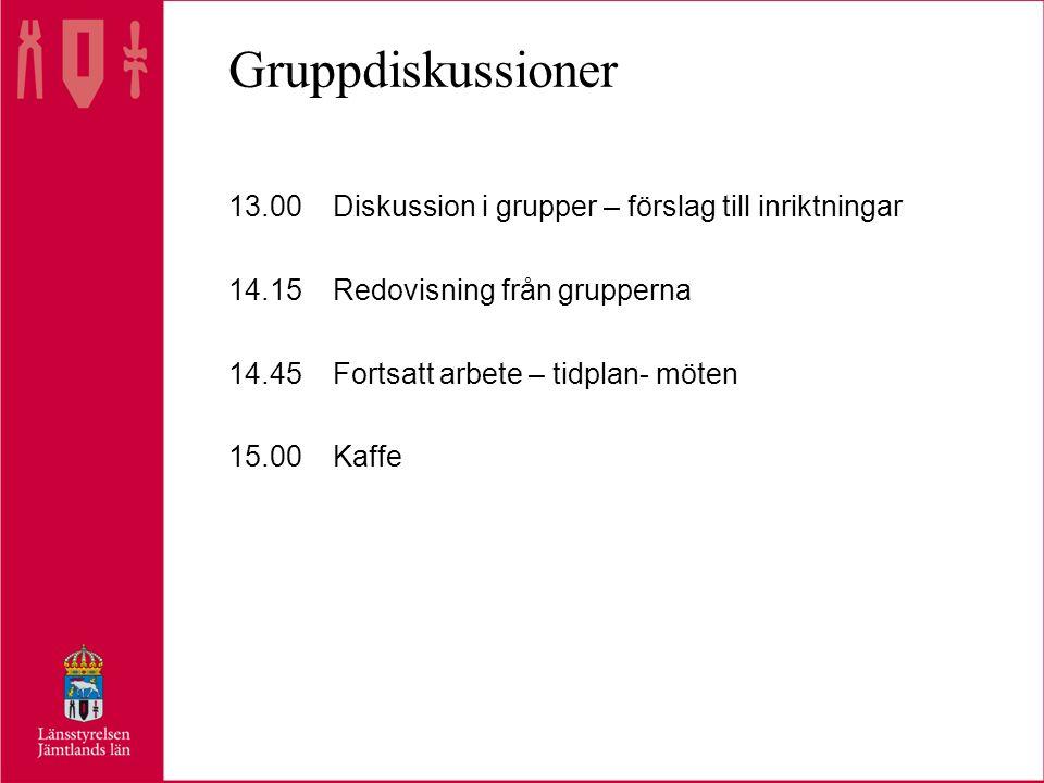 Gruppdiskussioner 13.00Diskussion i grupper – förslag till inriktningar 14.15Redovisning från grupperna 14.45Fortsatt arbete – tidplan- möten 15.00Kaffe