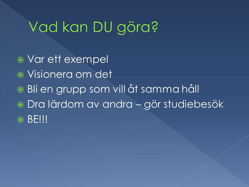  Var ett exempel  Visionera om det  Bli en grupp som vill åt samma håll  Dra lärdom av andra – gör studiebesök  BE!!!