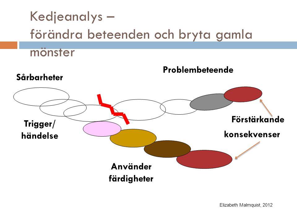 Kedjeanalys – förändra beteenden och bryta gamla mönster Trigger/ händelse Sårbarheter Problembeteende konsekvenser Använder färdigheter Förstärkande Elizabeth Malmquist, 2012