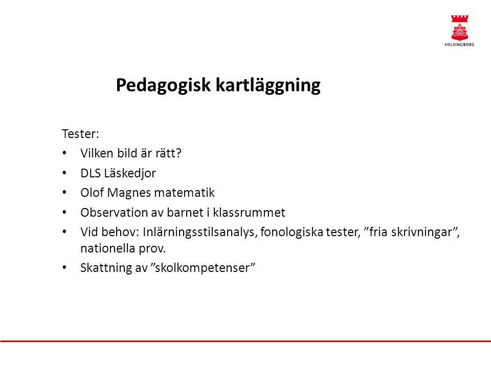 Tester: • Vilken bild är rätt? • DLS Läskedjor • Olof Magnes matematik • Observation av barnet i klassrummet • Vid behov: Inlärningsstilsanalys, fonol