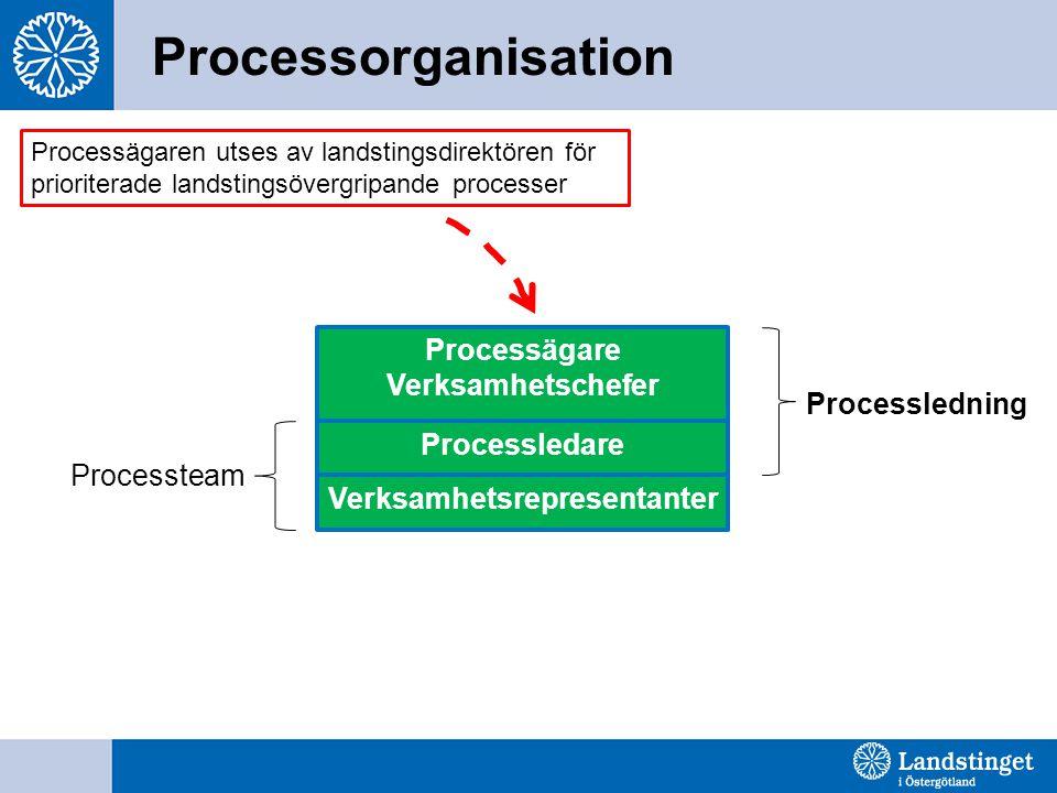 Processorganisation Processägare Verksamhetschefer Verksamhetsrepresentanter Processledare Processledning Processteam Processägaren utses av landstingsdirektören för prioriterade landstingsövergripande processer