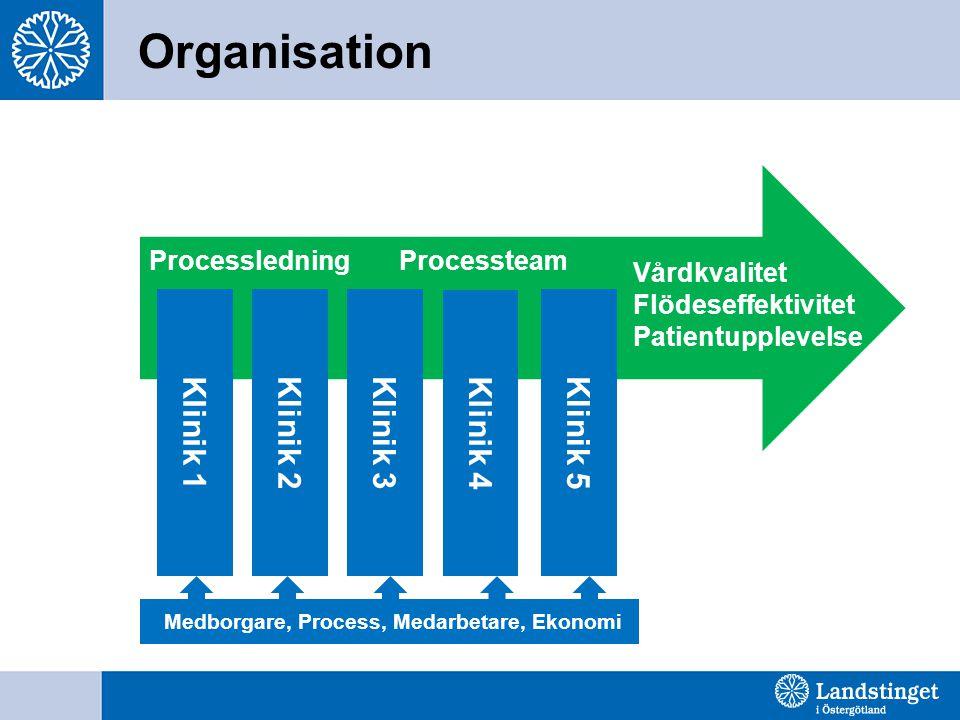 Processledning Processteam Vårdkvalitet Flödeseffektivitet Patientupplevelse Organisation Klinik 5 Klinik 1 Klinik 3Klinik 2 Klinik 4 Medborgare, Proc