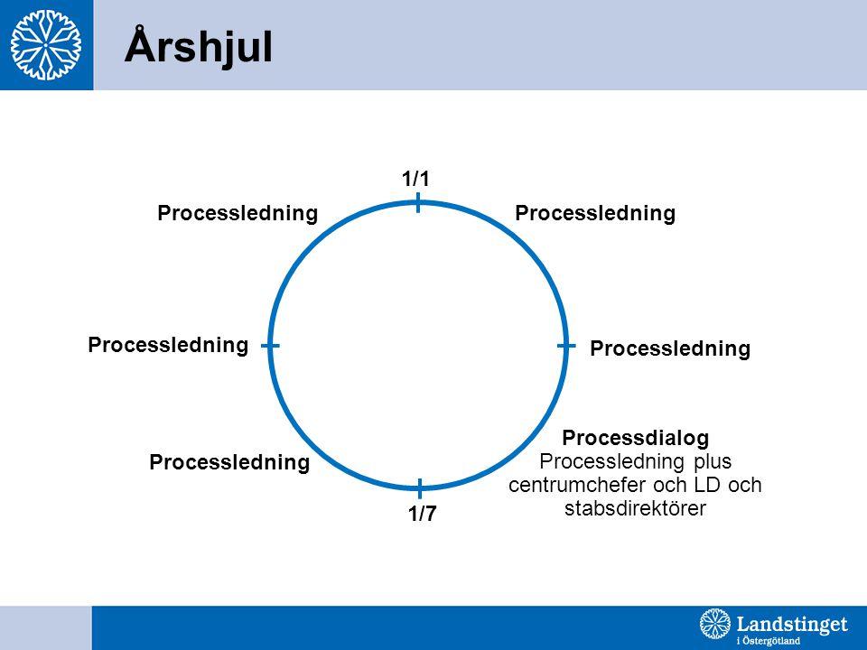 Processägare Syfte Att säkerställa en kund-/patientorienterad och effektiv process avseende arbetssätt, roller och resurser.