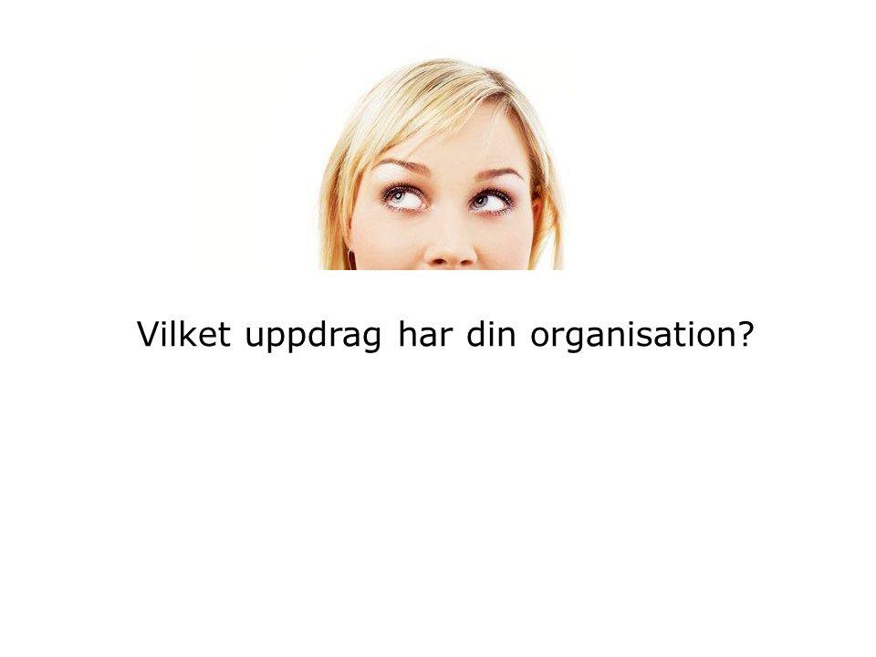 Vilket uppdrag har din organisation?