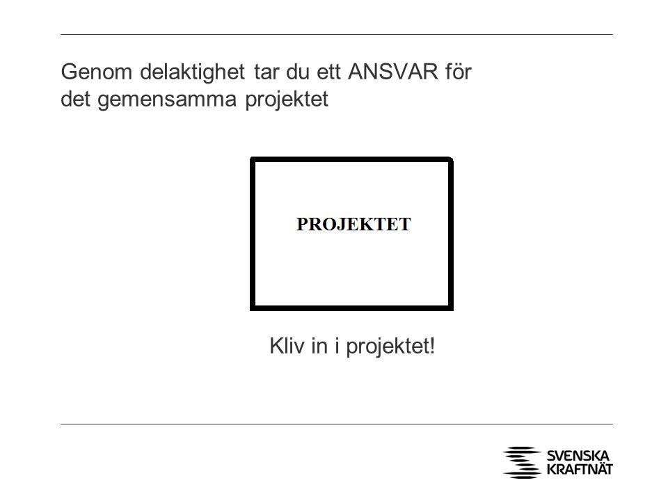 Genom delaktighet tar du ett ANSVAR för det gemensamma projektet Kliv in i projektet!