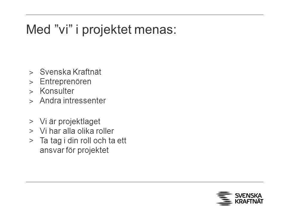 Med vi i projektet menas: ˃ Svenska Kraftnät ˃ Entreprenören ˃ Konsulter ˃ Andra intressenter >Vi är projektlaget >Vi har alla olika roller >Ta tag i din roll och ta ett ansvar för projektet