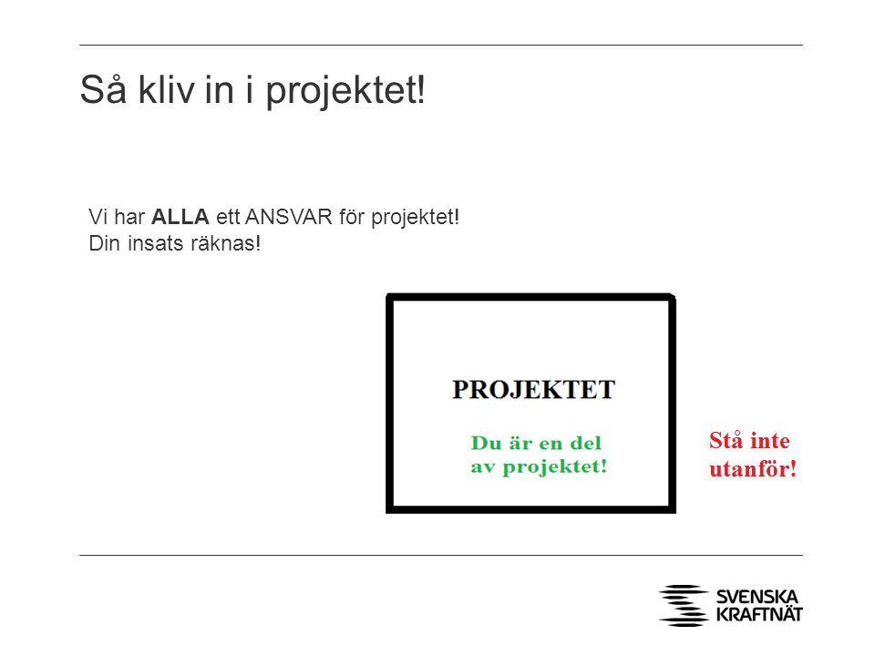 Så kliv in i projektet! Vi har ALLA ett ANSVAR för projektet! Din insats räknas!