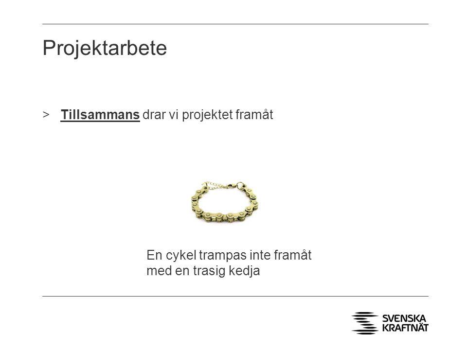 Projektarbete >Tillsammans drar vi projektet framåt En cykel trampas inte framåt med en trasig kedja