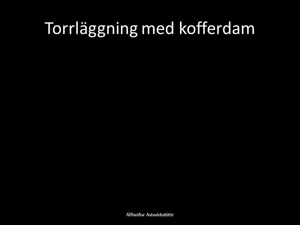 Torrläggning med kofferdam Álfheiður Ástvaldsdóttir