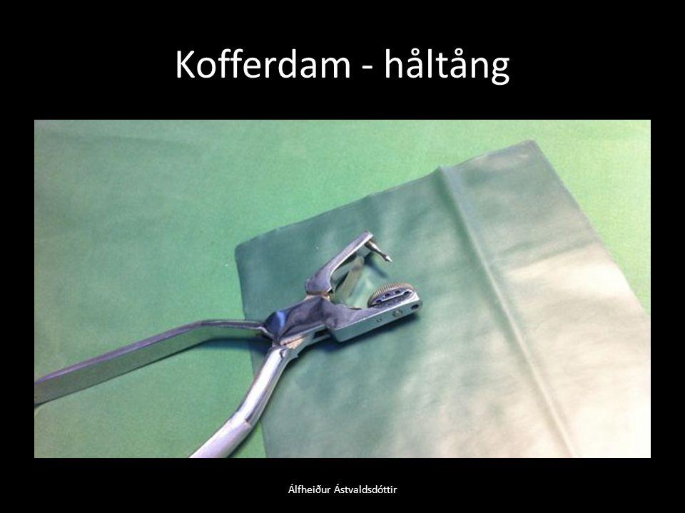 Kofferdam - håltång Álfheiður Ástvaldsdóttir